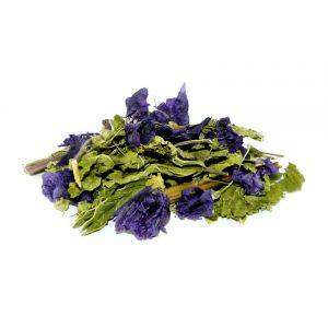 Hipcio Ziele Malwy z Kwiatem 100g